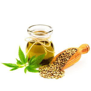 Hemp Oil | hemp hold oil | hemphold hair gel of super smelly