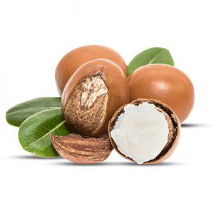 Shea-Butter for Chocolate Decadence Lip Balm | buy online teen lip balm | teenage lip balm | girls lip balm | organic lip balm