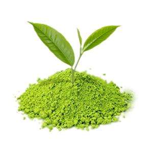 green tea extract face wash