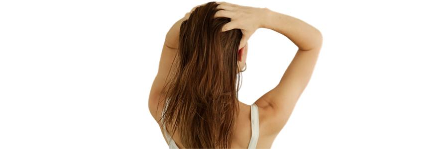 hair champi